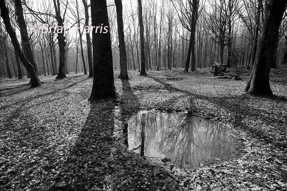 Battle of Belleau Wood WW1,north of Chateau-Thierry only 60 miles from Paris, France. March 2014<br /> Captured German guns  in the cratered Belleau Wood, now named 'Bois de la Brigade de Marine' after the US 4th Marine Brigade. Now a permanent memorial site.<br /> <br /> The Battle of Belleau Wood (1&ndash;26 June 1918) occurred during the German 1918 Spring Offensive in World War I, near the Marne River in France. The battle was fought between the U.S. Second (under the command of Major General Omar Bundy) and Third Divisions and an assortment of German units including elements from the 237th, 10th, 197th, 87th, and 28th Divisions.[2] The battle has become a deep part of the lore of the United States Marine Corps.<br /> In March 1918, with nearly 50 additional divisions freed by the Russian surrender on the Eastern Front, the German Army launched a series of attacks on the Western Front, hoping to defeat the Allies before U.S. forces could be fully deployed. A third offensive launched in May against the French between Soissons and Reims, known as the Third Battle of the Aisne, saw the Germans reach the north bank of the Marne river at Ch&acirc;teau-Thierry, 95 kilometres (59 mi) from Paris, on 27 May. On 31 May, the 3rd Division held the German advance at Ch&acirc;teau-Thierry and the German advance turned right towards Vaux and Belleau Wood.[3]<br /> <br /> On 1 June, Ch&acirc;teau-Thierry and Vaux fell, and German troops moved into Belleau Wood. The U.S. 2nd Division&mdash;which included a brigade of U.S. Marines&mdash;was brought up along the Paris-Metz highway. The 9th Infantry Regiment was placed between the highway and the Marne, while the 6th Marine Regiment was deployed to their left. The 5th Marines and 23rd Infantry regiments were placed in reserve.[4]<br /> Battle<br /> <br /> On the evening of 1 June, German forces punched a hole in the French lines to the left of the Marines' position. In response, the U.S. reserve&mdash;consisting of the 23rd Infantry regiment, the 1st Battalion, 5th Marines, and an element of the 6th Machine Gun Bat