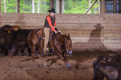 May 21, 2017 - Minshall Farm Cutting 4, held at Minshall Farms, Hillsburgh Ontario. The event was put on by the Ontario Cutting Horse Association. Riding in the 2,000 Limited Rider Class is Lynne Purdie on Timothy Taz owned by the rider.