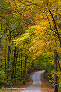 Small gravel road lined with autumn color in Brown County, Indiana, USA