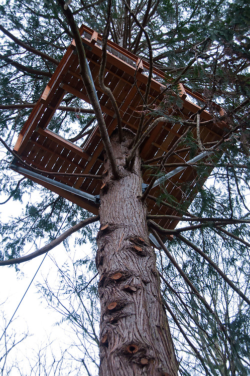 Zip Line Platform at Canopy Tours NW, Camano Island, Washington, US