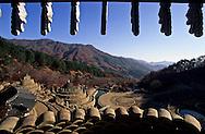 Samseonggung park with shamanist toltaps  Seoul  Korea   parc Samseonggung forteresse aux toltaps,chamanistes   Chonhakdong  coree  ///R20131/    L0006891  /  R20131  /  P104920///Le Parc de Samseonggung, au village des grues bleues, à Cheonghak-dong dans les Monts-Jiri, est récent. Il témoigne tout autant de la vitalité des traditions que de l'opportunisme touristique des Coréens!