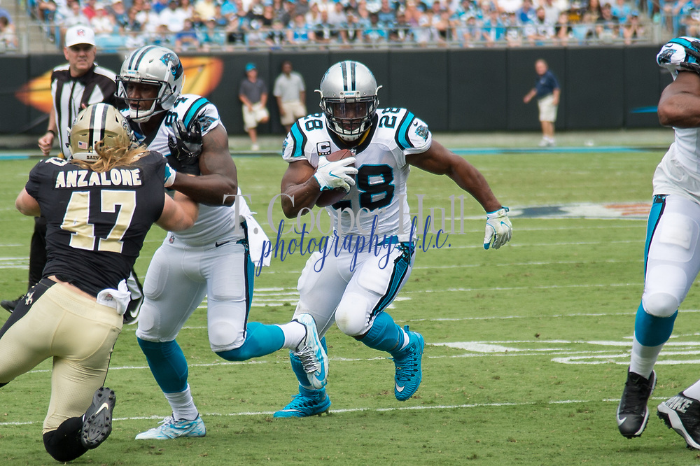 Jonathan Stewart(28) breaks through the defense in the New Orleans Saints 34 to 13 victory over the Carolina Panthers.