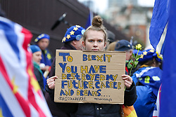 © Licensed to London News Pictures. 30/01/2020. London, UK. A Pro-European supporter hold a sign outside Houses of Parliament on the day before Brexit Day.  The UK will leave the European Union at 11pm on the 31 January 2020. Thereafter will be a transition period until the end of 2020, while the UK and EU negotiate additional arrangements. Photo credit: Dinendra Haria/LNP