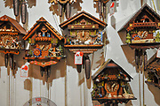 Cuckoo clocks for sale at Souvenir shop, Titisee, Neustadt, (Black forest Schwarzwald), Baden-Württemberg, Germany