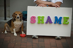 News media, tv, reproters, PETA animal rights and other demonstrators await arrival of Michael Vick, Atlanta Falcons football player on arraingment of animal cruelty charges for promoting dog fighting. July 26th, 2007 at Richmond, VA Federal courthouse.