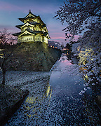 At dusk, as night approaches, the castle is lit, along with some of the cherry trees in the banks of the moat