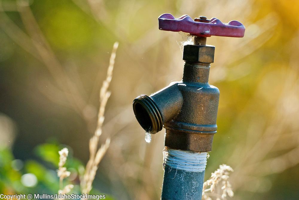Spigot with water drop