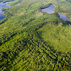 Lang and Little Lang Ponds (upper left), and Cold Stream Pond surrounded by industrial timberland in Maine's Northern Forest.