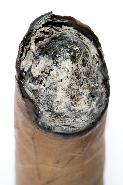 tip of halve smoked cigar