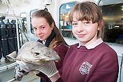 As part of the SEA FOR SOCIETY ocean awareness initiative Lydia Costello and Megan Williams from Scoil Iognaid Galway visited the Marine Institute's RV Celtic Explorer . Photo:Andrew Downes:XPOSURE