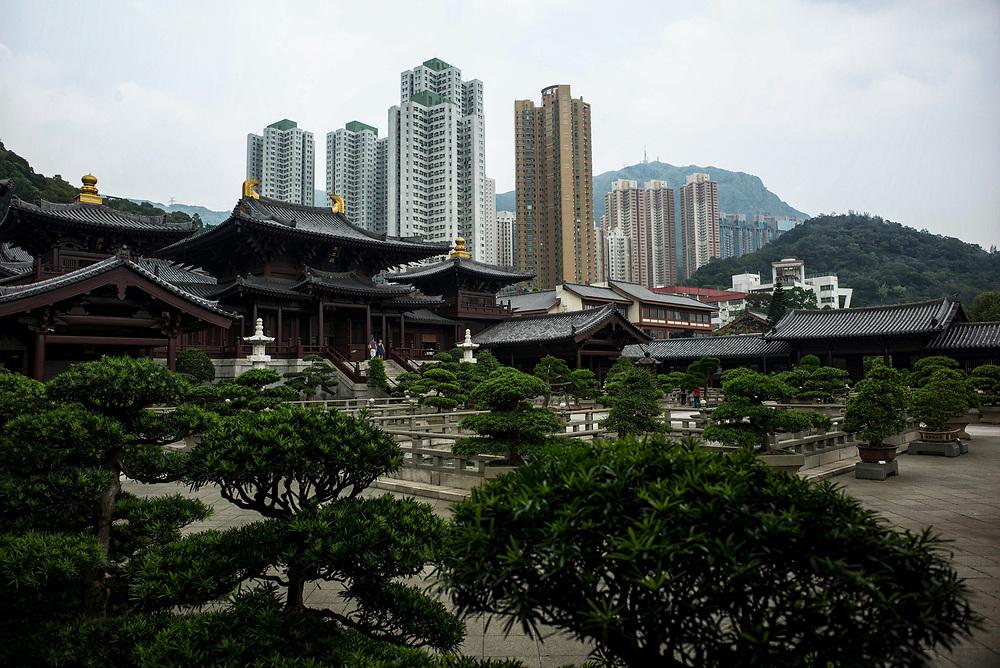 Hong Kong | 06.05.2017: Hong Kong <br /> <br /> hier: Nan Lian Garden, Chi Lin Nunnery<br />  <br /> Sascha Rheker<br /> 20170506<br /> <br /> [Inhaltsveraendernde Manipulation des Fotos nur nach ausdruecklicher Genehmigung des Fotografen. Vereinbarungen ueber Abtretung von Persoenlichkeitsrechten/Model Release der abgebildeten Person/Personen liegt/liegen nicht vor.]