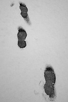 Footsteps in an Early Snowfall (Williams, Arizona). Gone to See America 2013. Image taken with a Leica X2 camera (ISO 400, 24 mm, f/2.8, 1/500 sec).