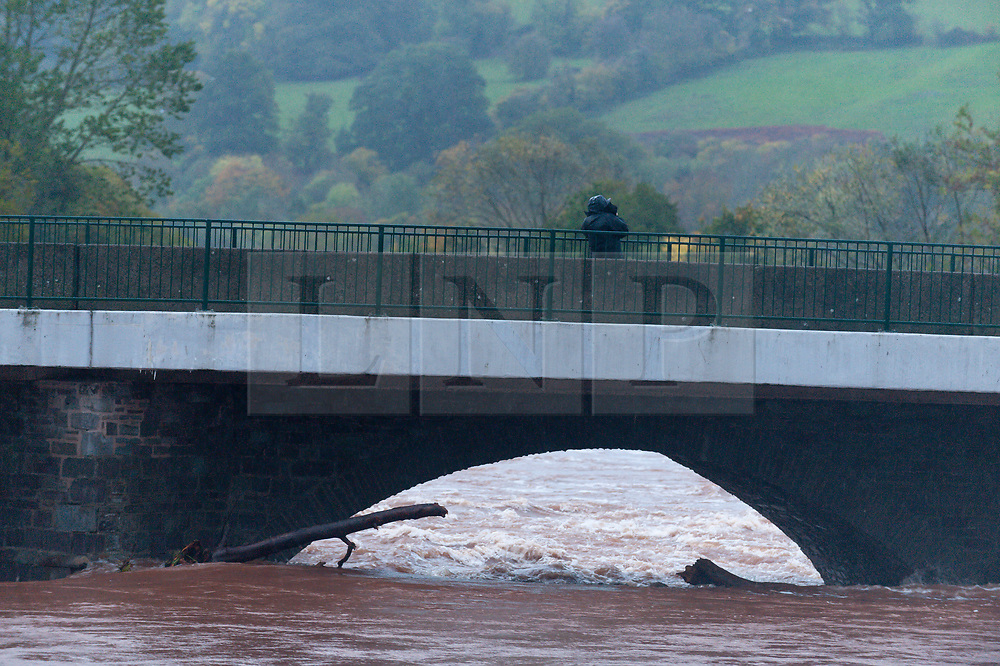 © Licensed to London News Pictures. 13/10/2018. Brecon, Powys, Wales, UK. Storm Callum continues to devastate South Wales. After a night of continuous heavy rainfall, the River Usk breaks it's banks at Brecon in Powys, and floods riverside properties. A local said that it's the worst that she has seen since 1976. Photo credit: Graham M. Lawrence/LNP