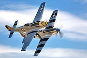 P-51 Mustangs in formation, aerial