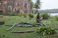 French Guyana. Amazonas forest and river. Host Oliver (Olly) is building a bamboo raft. to escape from royal island former prison ,    / host oliver , construit un bateau en bambou pour   s evader de l ile royale , l ancien bagne de guyane. reconstitution pour un documentaire.
