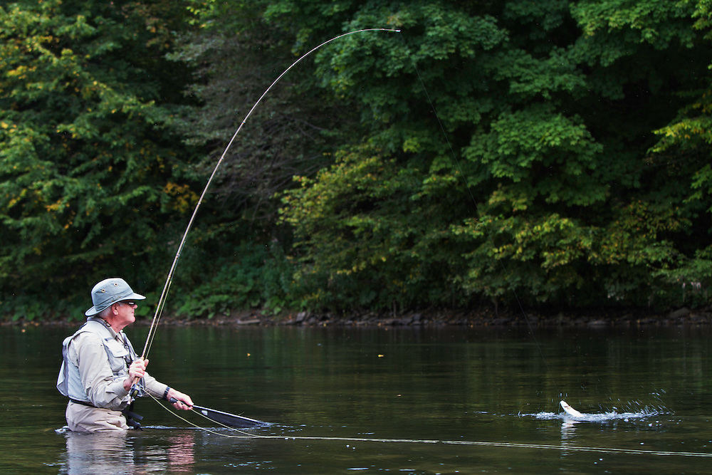 Lawrence Greasley, flyfisher from the UK, pulling in a Grayling (Thymallus thymallus) from the San River. Myczkowce, Poland.