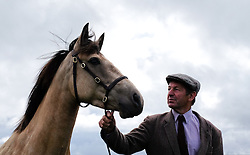 © Licensed to London News Pictures.26/08/15<br /> Egton, UK. <br /> <br /> A man holds onto the bridle of his horse at the 126th Egton Show in North Yorkshire. <br /> <br /> Egton is one of the largest village shows in the country and is run by a band of voluntary helpers. <br /> <br /> This year the event featured wrought iron and farrier displays, a farmers market, plus horse, cattle, sheep, goat, ferret, fur and feather classes. There was also bee keeping, produce and handicrafts on display.<br /> <br /> Photo credit : Ian Forsyth/LNP