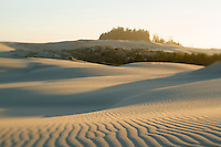Oregon Dunes National Recreation Area.