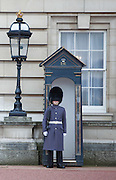 A member of the Queens Guard patrols outside Buckingham Palace, the official London residence of the British monarch.