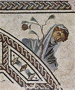 Detail from Gallo-Roman mosaic pavement showing head and shoulders of woman and sprig of tree, and part of decorative border.