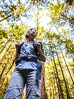 A low angle view of a woman hiking with trees towering above her, Little Si trail, Washington, USA.