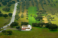 Small church at the middle of an olive tree field at Alentejo