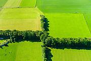 Nederland, Utrecht, De Groep, 29-05-2019; weilanden en bomenrij, afscheiding, landelijk gebied in de Utrechtse heuvelrug.<br /> Meadows and row of trees, rural area in the Utrecht ridge.<br /> <br /> luchtfoto (toeslag op standard tarieven);<br /> aerial photo (additional fee required);<br /> copyright foto/photo Siebe Swart