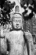 SRI LANKA. The Aukana Buddha Statue.