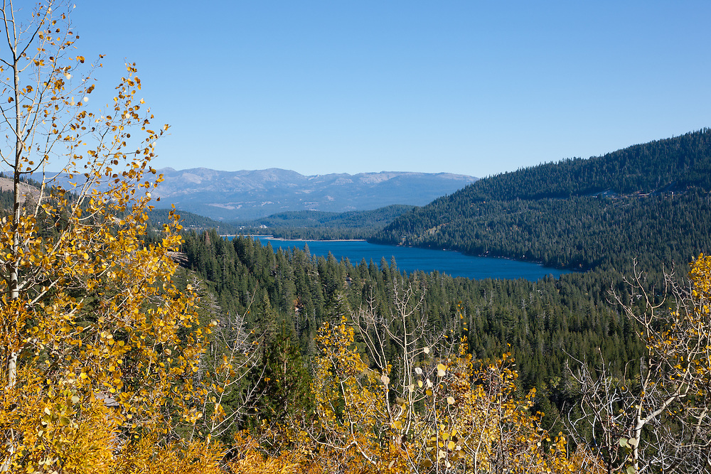 """""""Donner Lake in Autumn 3"""" - Photograph of yellow aspen leaves in autumn with Donner Lake in the background."""