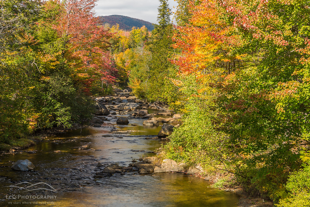 Orbeton Stream in fall. Madrid Township, Maine.