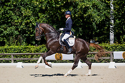 Franckx Tom, BEL, Quanto Curo vh Bloemenhof<br /> Final selection WK Young Horses<br /> © Hippo Foto - Sharon Vandeput<br /> 29/06/19