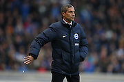 Brighton Manager, Chris Hughton during the EFL Sky Bet Championship match between Brighton and Hove Albion and Fulham at the American Express Community Stadium, Brighton and Hove, England on 26 November 2016.