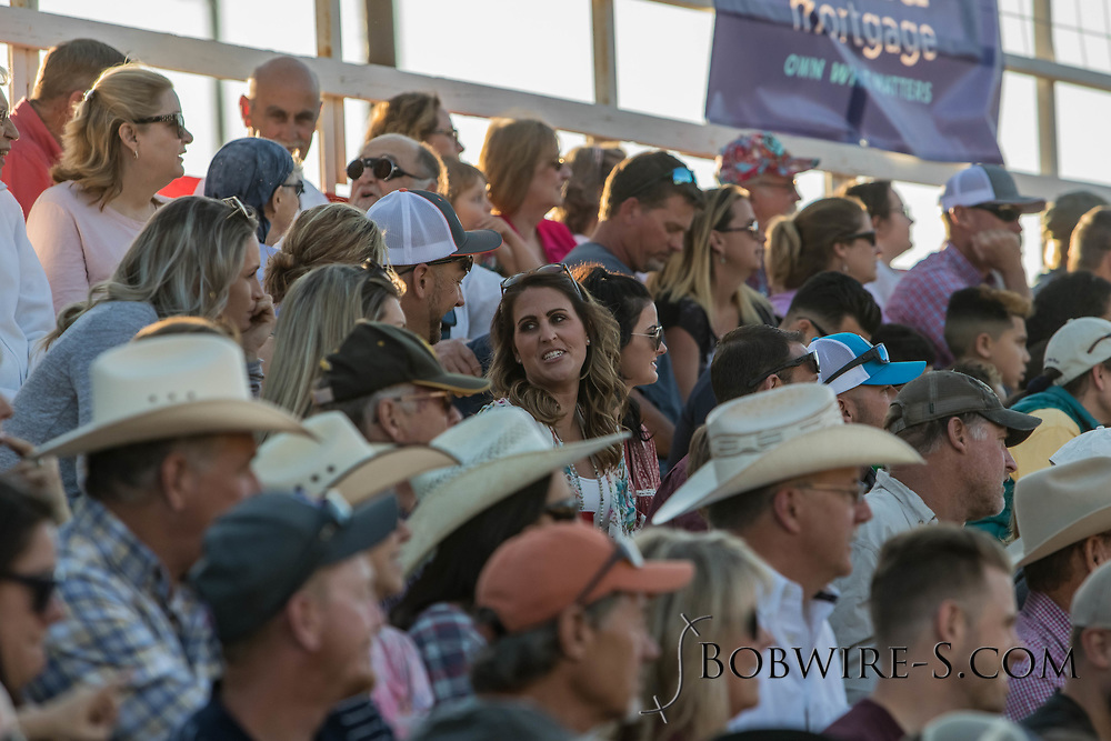 Rodeo fans enjoy the second performance of the Elizabeth Stampede on Saturday, June 2, 2018.