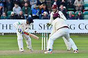 Wicket - Shivnarine Chanderpaul of Lancashire is boewled by Dom Bess of Somerset during the Specsavers County Champ Div 1 match between Somerset County Cricket Club and Lancashire County Cricket Club at the Cooper Associates County Ground, Taunton, United Kingdom on 14 September 2017. Photo by Graham Hunt.