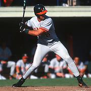 1997 Hurricanes Baseball
