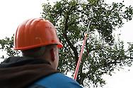 Mit Äpfeln Arbeitsplätze schaffen. Äpfel, die überall an den Bäumen hängen bleiben, werden durch eine gärtnermeisterlich betreute Gruppe von Beschäftigten mit Behinderung geerntet, bei einer Slow-Food-Mosterei zu naturtrübem Direktsaft verarbeitet. Diesen verkaufen wir im persönlichen Vertrieb an Firmen und Privatkunden, finanzieren so die Arbeit der Beschäftigten mit Behinderung. Ziel  ist die Schaffung von Arbeitsplätzen für behinderte Menschen und andere «soziale Randgruppen» auf dem ersten Arbeitsmarkt.