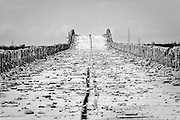 Black and White Photograph of the Old Oversees Highway, Road to Nowhere, Bahia Honda State Park, Big Pine Key, Florida (2007)
