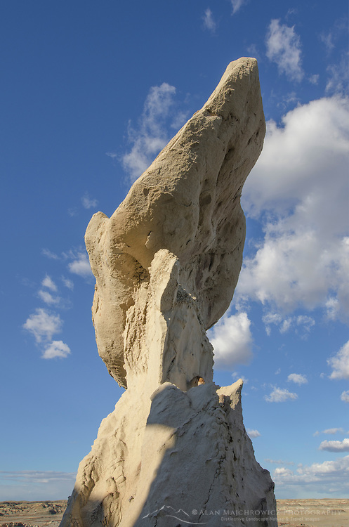 Wing sandstone formation, Bisti Badlands, Bisti/De-Na-Zin Wilderness, New Mexico