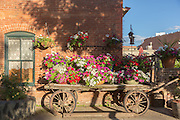 Flowers blooming on an old railroad luggage cart along Old Firehouse Alley in the Old Town historic shopping and restaurant district in Fort Collins, Colorado.