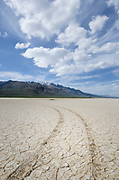 Tire tracks on dry Alvord Lake, a seasonal shallow alkali lake in Harney County, Oregon