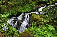 Steelhead Falls near the Hayward Reservoir Trail in Mission, British Columbia, Canada