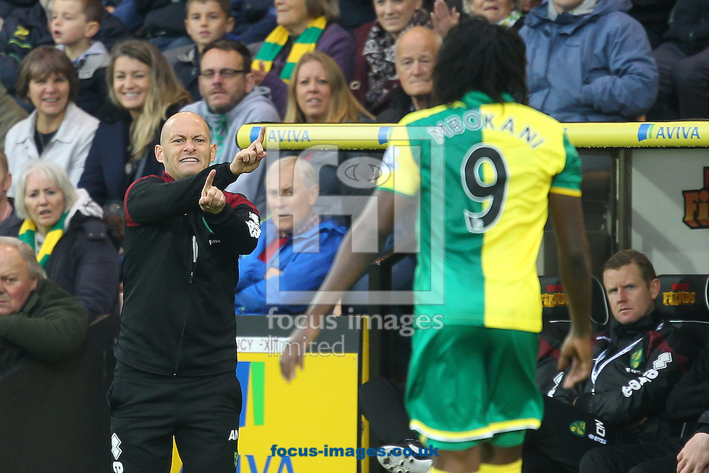 Norwich Manager Alex Neil gives instructions to Dieumerci Mbokani of Norwich during the Barclays Premier League match at Carrow Road, Norwich<br /> Picture by Paul Chesterton/Focus Images Ltd +44 7904 640267<br /> 24/10/2015