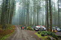 Van camping. Oregon