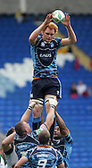 Cardiff Blues capt reaches to win a lineout ball. Cardiff Blues v Harlequins , Heineken cup match at the Cardiff City Stadium on Sat 10th Oct 2009. pic by Andrew Orchard