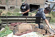 Osh police exhume the body of one of their colleagues, murdered during the ethnic violence in June. July 2, 2010.