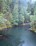 Elwha River, Fall, Autumn, Fall Colors, Olympic, Olympic National Park, Washington , Glines Canyon Dam, Elwha Dam,  Lake Mills, Lake Aldwell , Upper Elwha Dam