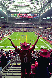 Stock photo of an excited fan in a David Carr jersey at the Texans game at Reliant Stadium