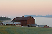 Cowichan Valley farm at dawn, Vancouver Island, British Columbia, Canada