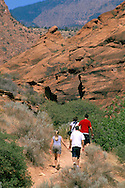 Pools in narrow canyon, Red Cliffs Recreation Area, Utah's Dixie, near St. George, UTAH