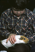 young boy petting guinea pig